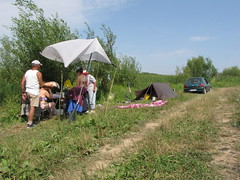 tent, camping, rural area,