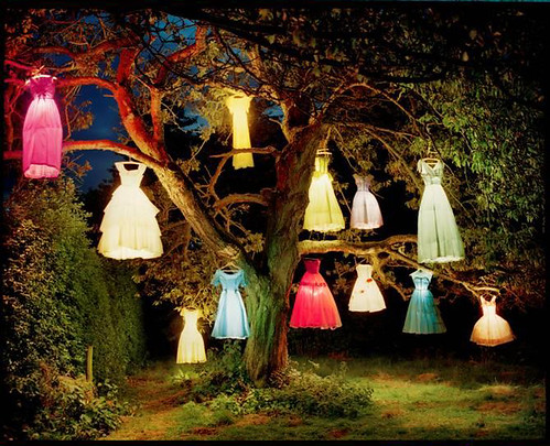 Dress Lamp Tree by Tim Walker