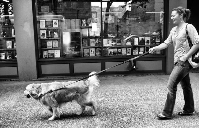 Dog Walking Mission Statement