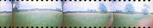 film rural 35mm georgia landscape lomography dianaf sprockets