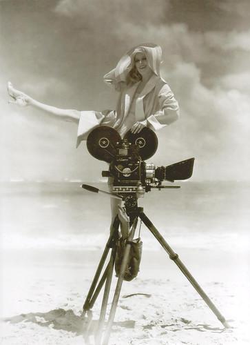 dorothy revier, the black camel 1931