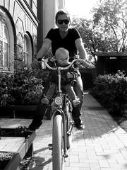Lulu's Ride