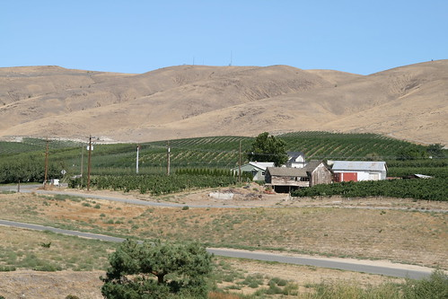 usa washington yakima wapato sagelands sagelandsvineyard