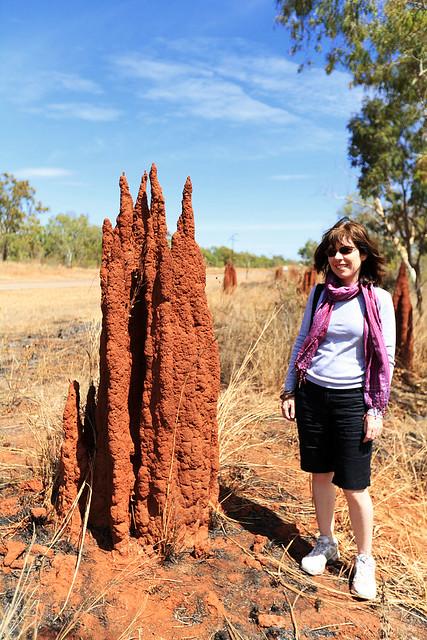 Little termite mound