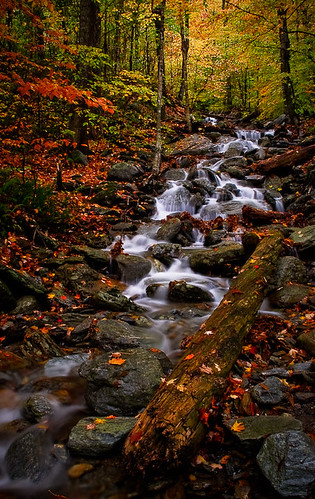 color fall water leaves waterfall vermont foliage stowe cascade vt smugglers notch