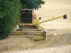 asphalt(0.0), construction equipment(0.0), bulldozer(0.0), agriculture(1.0), field(1.0), vehicle(1.0), plant(1.0), harvest(1.0), crop(1.0), harvester(1.0),