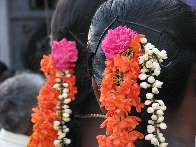 india - sights  u0026 culture