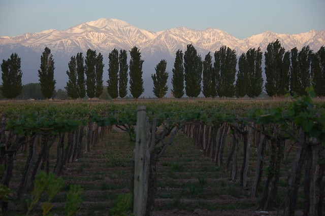 Sunrise in Mendoza