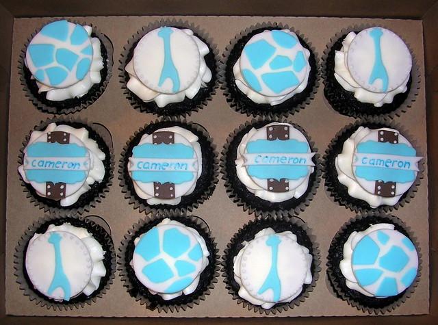 blue safari baby shower cupcakes flickr photo sharing