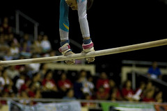 athletics(0.0), basketball moves(0.0), pole vault(0.0), high jump(0.0), rings(0.0), physical exercise(0.0), sports(1.0), gymnastics(1.0), artistic gymnastics(1.0), uneven bars(1.0),