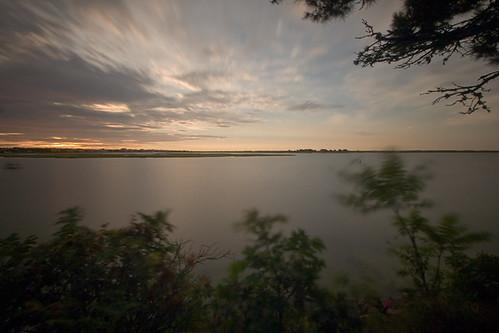 longexposure tree sunrise river ma movement capecod massachusetts bassriver 12849riversunrise