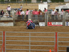 equestrian sport(0.0), fair(0.0), barrel racing(0.0), animal sports(1.0), rodeo(1.0), event(1.0), sports(1.0), bull riding(1.0),