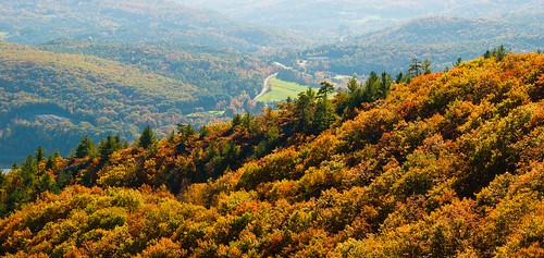 autumn fall chesterfieldnh madamesherriforest