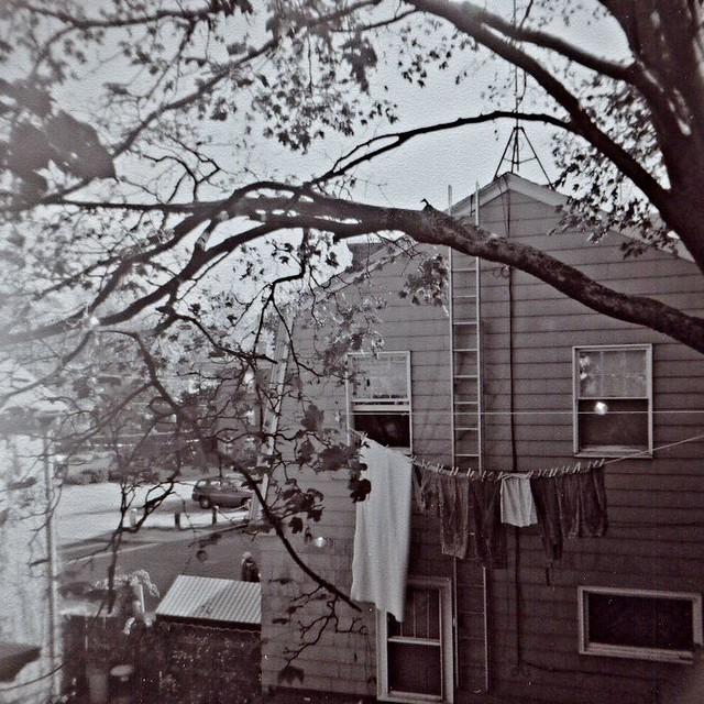 backyard clothesline flickr photo sharing