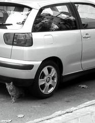 automobile, automotive exterior, supermini, vehicle, compact car, bumper, land vehicle, hatchback,