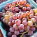Canadice Grapes