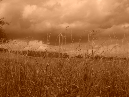 sky storm grass clouds