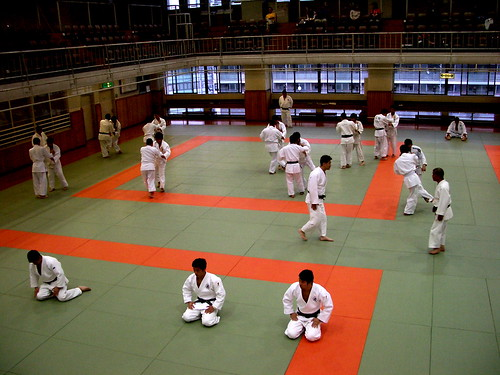 Kodokan Judo Institute