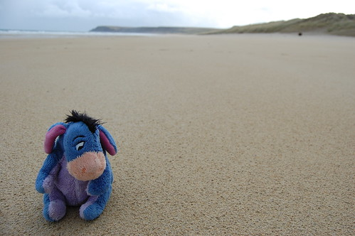 Big Beach, Little Donkey