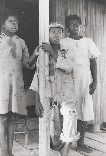 Part of a Negro tenant family, on a farm near Greensboro, Al...