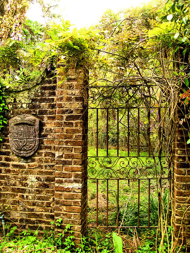 Forgotten Garden, Richmond Plantation