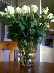 flower arranging(1.0), flowerpot(1.0), cut flowers(1.0), flower(1.0), artificial flower(1.0), floral design(1.0), plant(1.0), centrepiece(1.0), vase(1.0), flower bouquet(1.0), floristry(1.0),