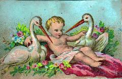 Boy with Birds