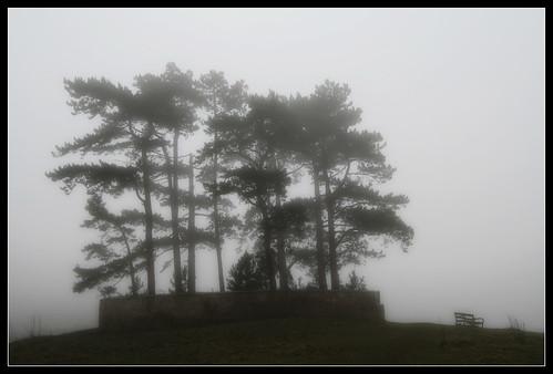 Wotton's Edge