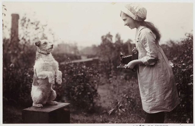 Girl Photographing a Dog