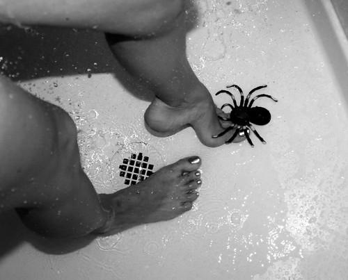Arachnophobia by Gods Emerald