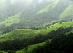 Kudremukh National Park, India