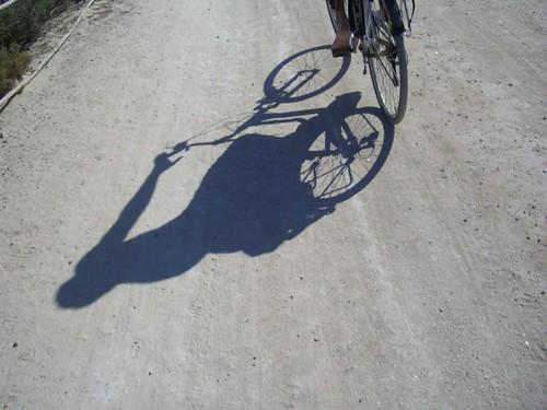 Ibiza 2008, Bikes