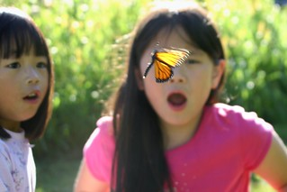 Girls in Awe as Monarch Flies Away