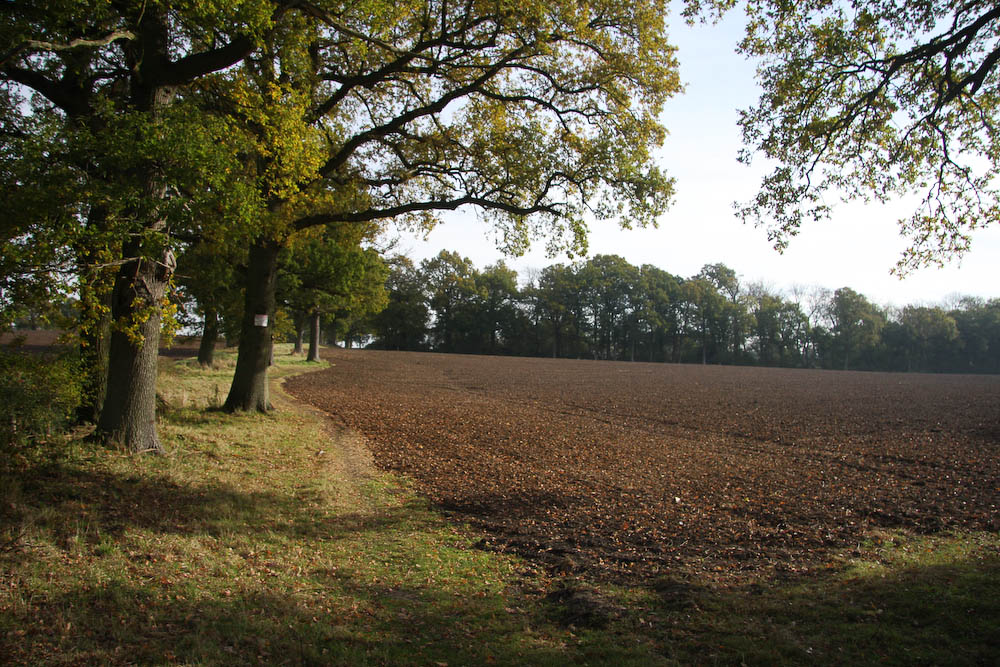Farmland of Snowerhill Farm