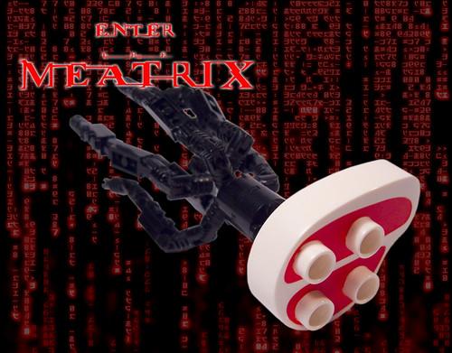 Enter the Meatrix