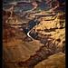 Grand Canyon (8)