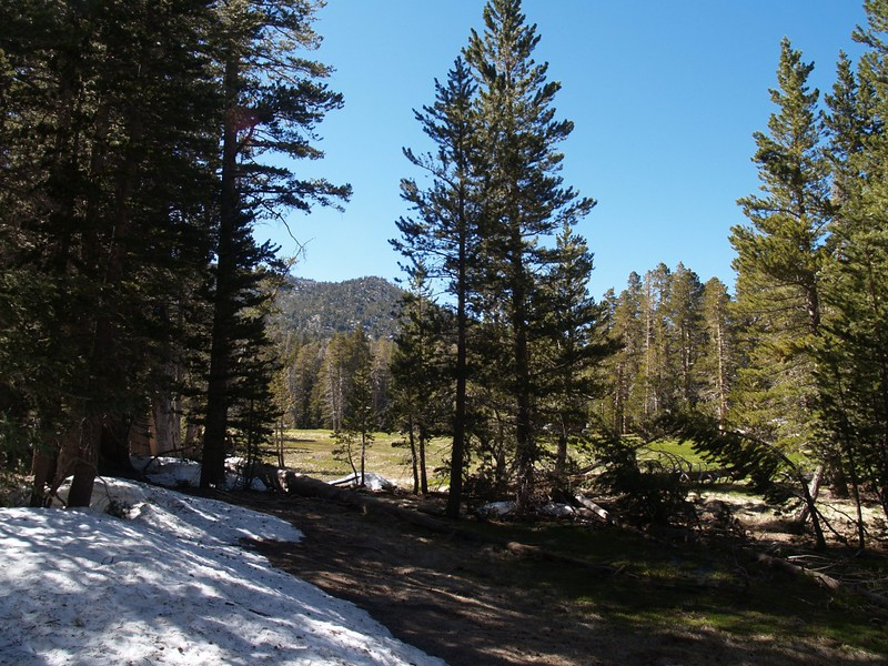 The meadow in Round Valley