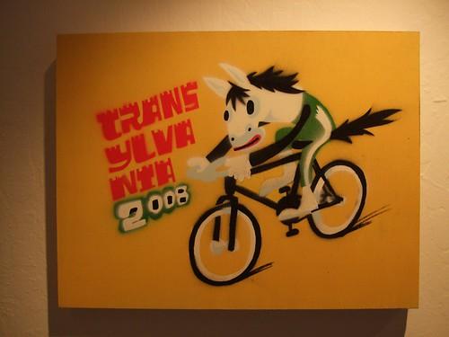 TRANSYLVANIA national bike team.  show now up at manifesto bikes, OAKLAND