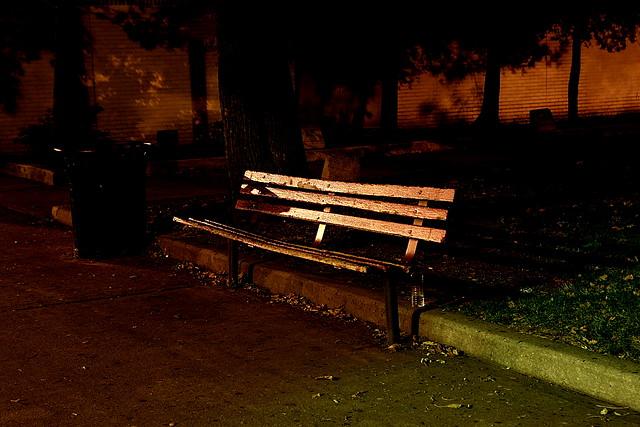 Park Bench At Night Exposure 30 Sec 30 Aperture F 8 Fo Flickr