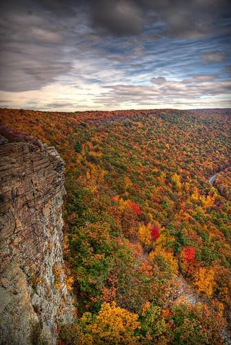 fall colors leaves photography pennsylvania sony son foliage pa alpha dslr 2008 atumn a300 α dslra300 α300 dslra300k αlpha dslrα300 dslrα300k