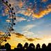 Day 227:  Eye Sunset by kayodeok