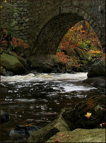 park new autumn trees fall nature water leaves landscape outdoors nj jersey boonton gracelordpark