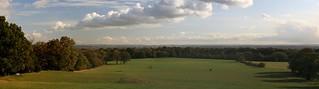 IMG_3500 - Oxleas Meadows