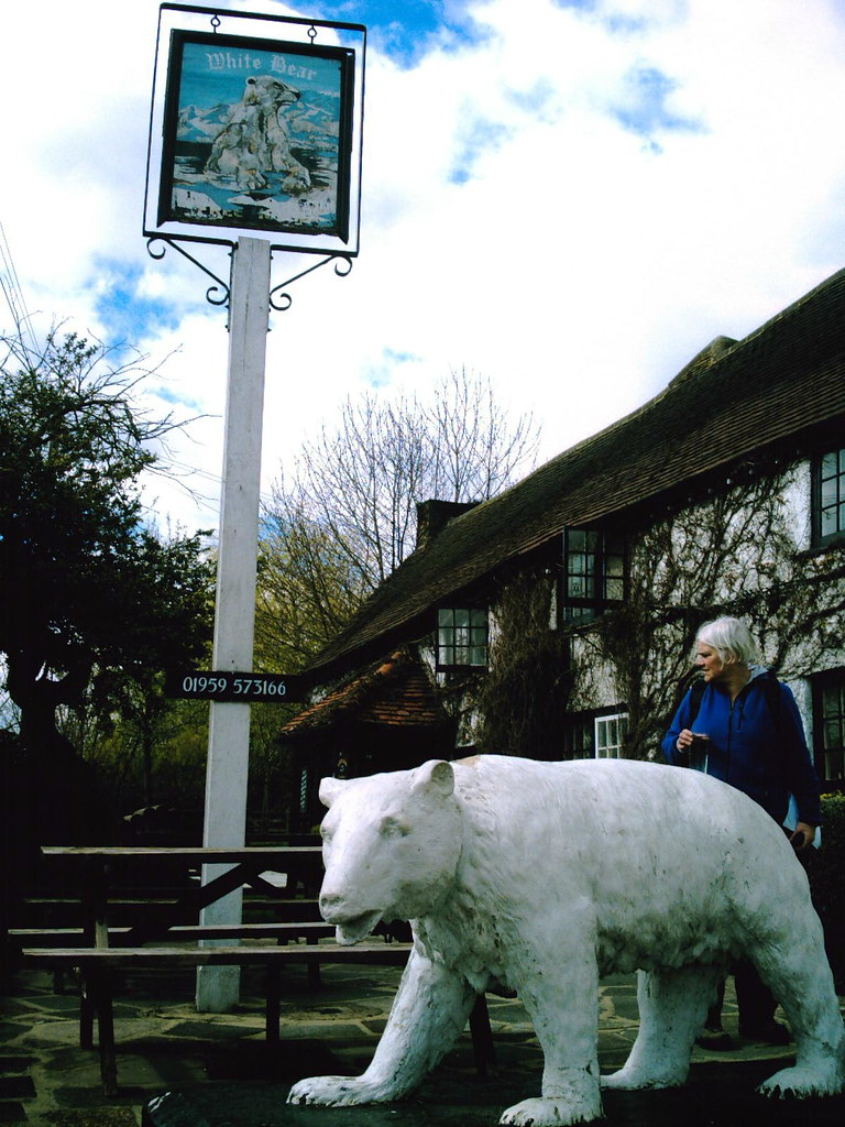 Extra Walk 38 Upper Warlingham to Hayes. The White Bear, Fickleshole Where's my beer? Hofmeister if you don't mind! Camera: Vivitar 5199 5mp