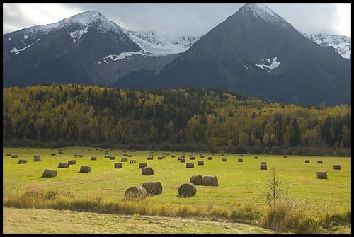mountain nikon bc d70 britishcolumbia farm north harvest fields smithers hay thechallengegame challengegamewinner