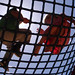 Small photo of Encounter on a Net