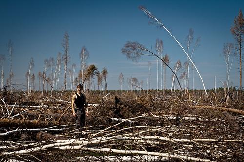 2010俄羅斯森林大火的隔年。(來源:Max Mayorov)