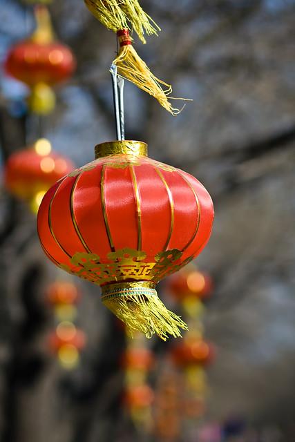 Swinging Chinese Lanterns