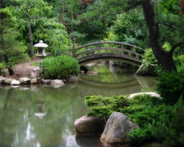Photo for Fish pond bridges