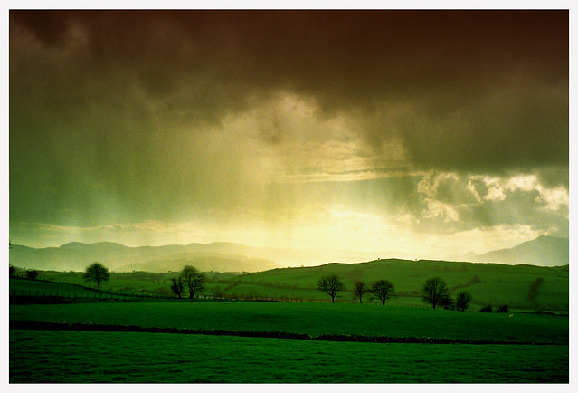 Stormy Fields